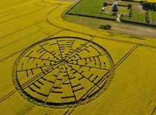 Wilton Windmill, Wiltshire | 22nd May 2010 | Oilseed Rape L3