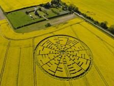 Wilton Windmill, Wiltshire | 22nd May 2010 | Oilseed Rape L4