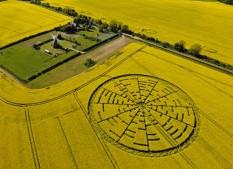 Wilton Windmill, Wiltshire | 22nd May 2010 | Oilseed Rape L5