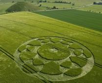 Silbury Hill, Wiltshire | 31st May 2010 | Barley L