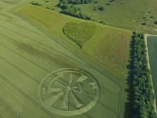 Oare, Wiltshire | 21st June 2010 | Wheat L2
