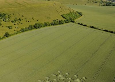 White Sheet Hill near Mere, Wiltshire | 25th June 2010 | Wheat L3