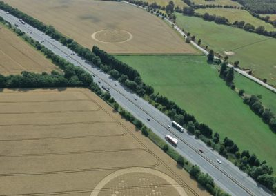 Wickham Green North M4, Berkshire | 29th July 2010 | Wheat L