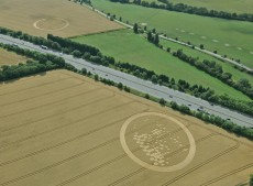 Wickham Green North M4, Berkshire | 29th July 2010 | Wheat L2