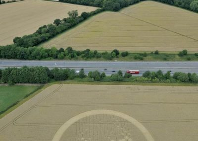 Wickham Green South M4, Berkshire | 29th July 2010 | Wheat L2
