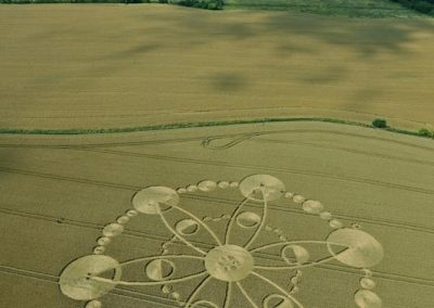 Windmill Hill, Wiltshire | 27th July 2010 | Wheat L