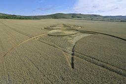 East Field Alton Barnes, Wiltshire | 3rd August 2010 | Wheat LOW3