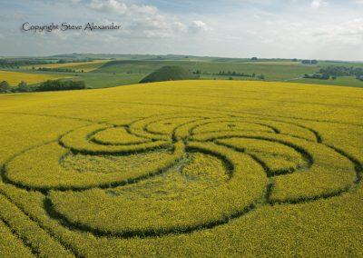 Silbury Hill, Wiltshire | 29th April 2011 | Oilseed Rape L2