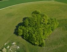 Woodborough Hill near Alton Barnes, Wiltshire | 3rd May 2011 | WH
