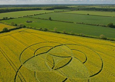 Hannington, Wiltshire | 7th May 2011 | Oilseed Rape L