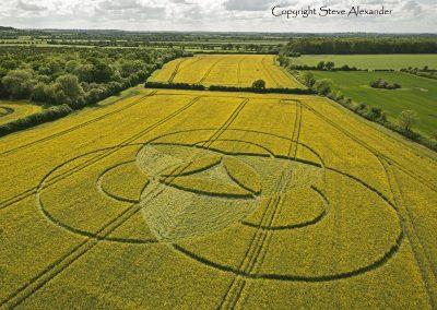 Hannington, Wiltshire | 7th May 2011 | Oilseed Rape L3