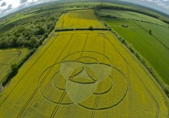Hannington, Wiltshire | 7th May 2011 | Oilseed Rape FE
