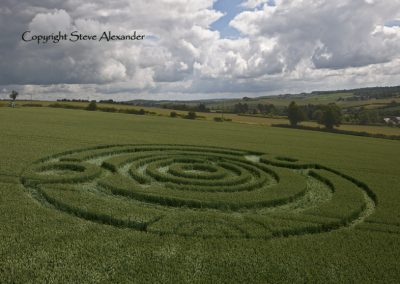 Kings Somborne, Hampshire | 18th June 2011 | Wheat LOW