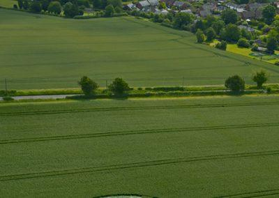 Kings Somborne, Hampshire | 18th June 2011 | Wheat L