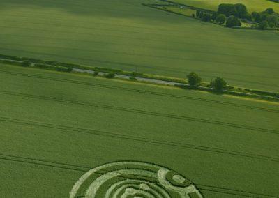 Kings Somborne, Hampshire | 18th June 2011 | Wheat L2