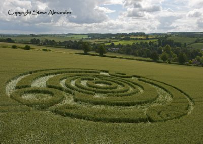 Kings Somborne, Hampshire | 18th June 2011 | Wheat LOW2