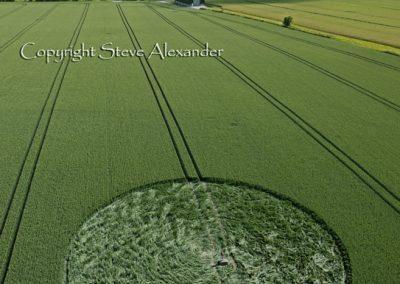 Stanton St Bernard, Wiltshire | 21st June 2011 | Wheat L