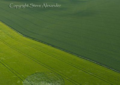 Winterbourne Stoke 2 near Stonehenge, Wiltshire | 21st June 2011 | Barley L
