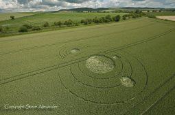 Allington, Wiltshire | 28th June 2011 | Wheat L