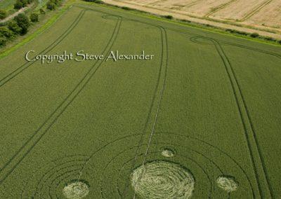 Allington, Wiltshire | 28th June 2011 | Wheat L2