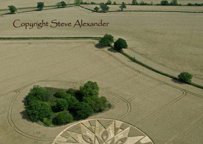 Temple Balsall, Warwickshire | 20th July 2011 | Wheat L3