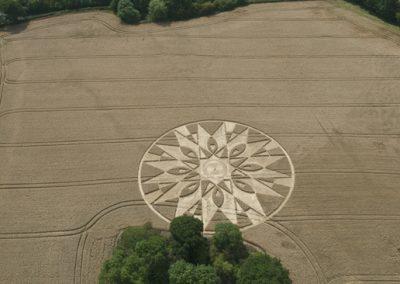 Temple Balsall, Warwickshire | 20th July 2011 | Wheat L4
