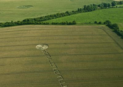 Honey Street Alton Barnes, Wiltshire | 4th July 2011 | Wheat L2