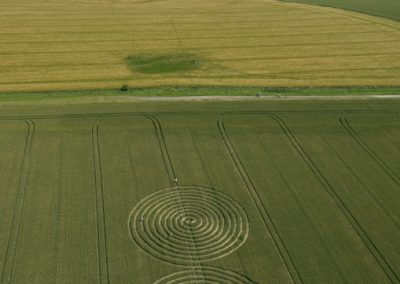 Chaddenwick Hill near Mere, Wiltshire | 13th July 2011 | Wheat L3