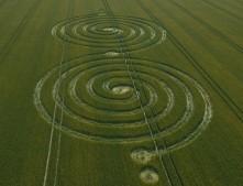 Windmill Hill Avebury, Wiltshire | 13th July 2011 | Wheat L