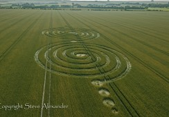 Windmill Hill Avebury, Wiltshire | 13th July 2011 | Wheat L2