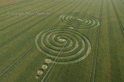 Windmill Hill Avebury, Wiltshire | 13th July 2011 | Wheat OH3