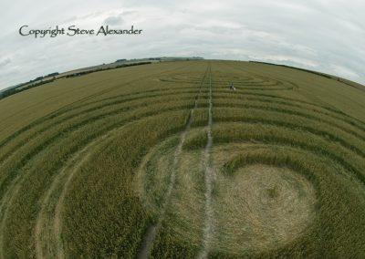 Windmill Hill Avebury, Wiltshire | 13th July 2011 | Wheat P2