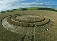West Kennett Long Barrow, Wiltshire | 25th July 2011 | Barley P2