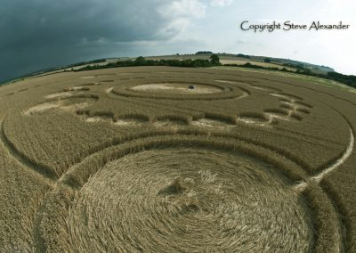 Windmill Hill, Wiltshire | 26th July 2011 | Wheat P3