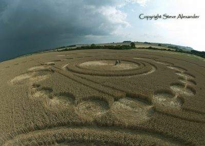 Windmill Hill, Wiltshire | 26th July 2011 | Wheat P