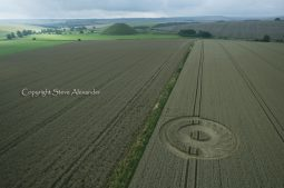 Silbury Hill, Wiltshire | 2nd August 2011 | Wheat L2