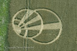 Giants Grave near Oare, Wiltshire | 10th August 2011 | Wheat