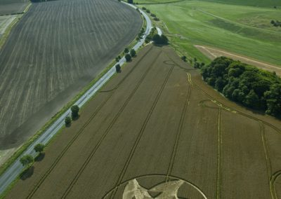 Knoll Down near Beckhampton, Wiltshire | 13th August 2011 | Wheat L