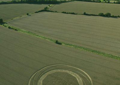 Jubilee Plantation near Cherhill, Wiltshire | 15th August 2011 | Wheat L2