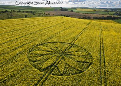Hill Barn East Kennett, Wiltshire | 15th April 2012 | Oilseed Rape L2