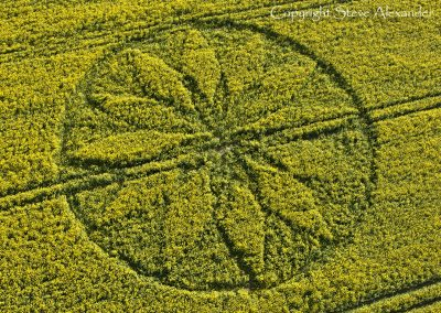 Hill Barn East Kennett, Wiltshire | 15th April 2012 | Oilseed Rape OH