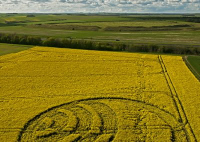 Yarnbury Castle near Winterbourne Stoke, Wiltshire | 28th April 2012 | Oilseed Rape L