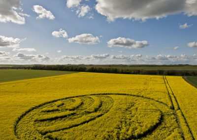 Yarnbury Castle near Winterbourne Stoke, Wiltshire | 28th April 2012 | Oilseed Rape L2
