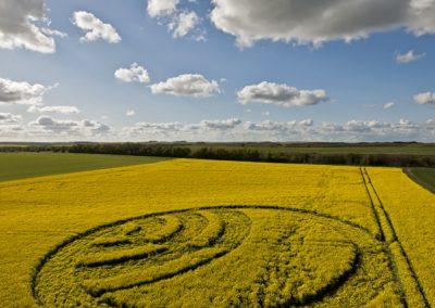 Yarnbury Castle near Winterbourne Stoke, Wiltshire | 28th April 2012 | Oilseed Rape L2