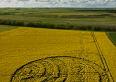 Yarnbury Castle near Winterbourne Stoke, Wiltshire | 28th April 2012 | Oilseed Rape TS
