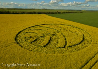 Yarnbury Castle near Winterbourne Stoke, Wiltshire | 28th April 2012 | Oilseed Rape L4