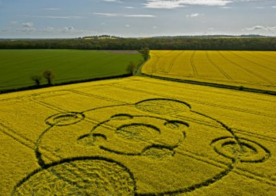 Water Eaton Copse Hannington, Wiltshire | 12th May 2012 | Oilseed Rape L