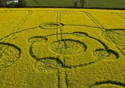Water Eaton Copse Hannington, Wiltshire | 12th May 2012 | Oilseed Rape LOW