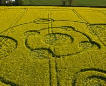 Water Eaton Copse Hannington, Wiltshire   12th May 2012   Oilseed Rape LOW