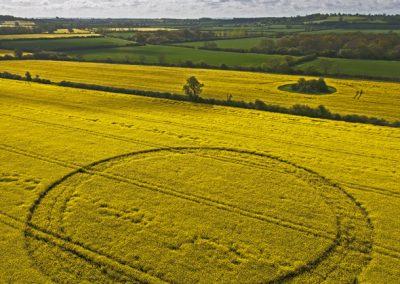 Ashmead Break Hannington, Wiltshire | 13th May 2012 | Oilseed Rape